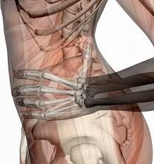 sciatic nerve mobilization