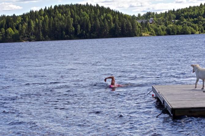 öppetvatten simning1