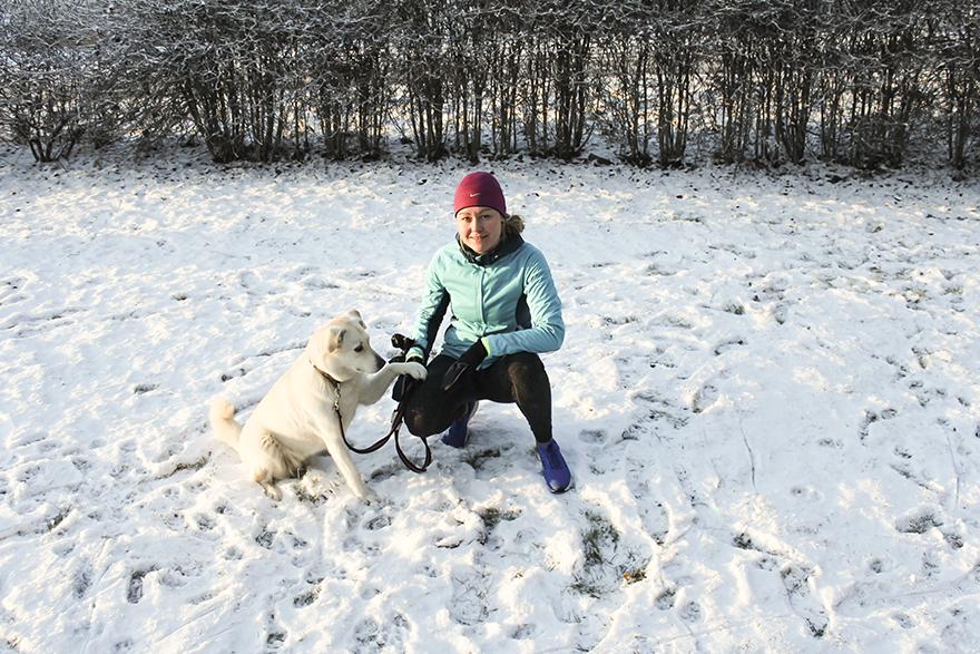 vinter_hund