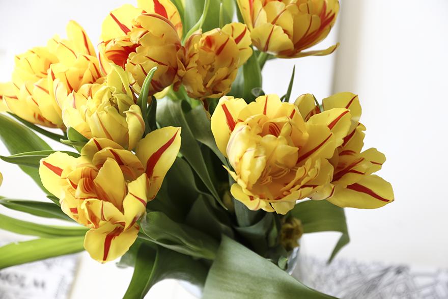 blommor till frukostbordet