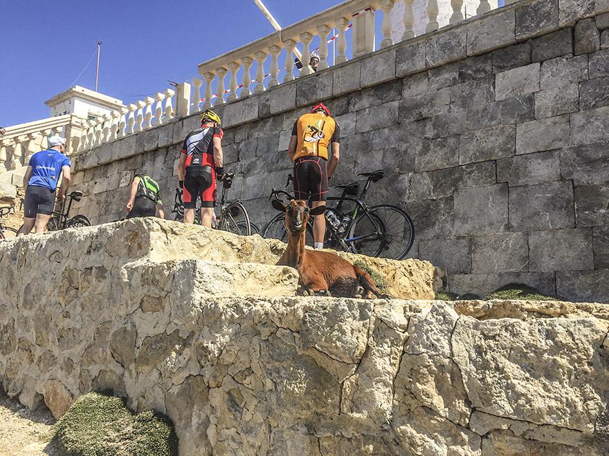 Formentor_cykling