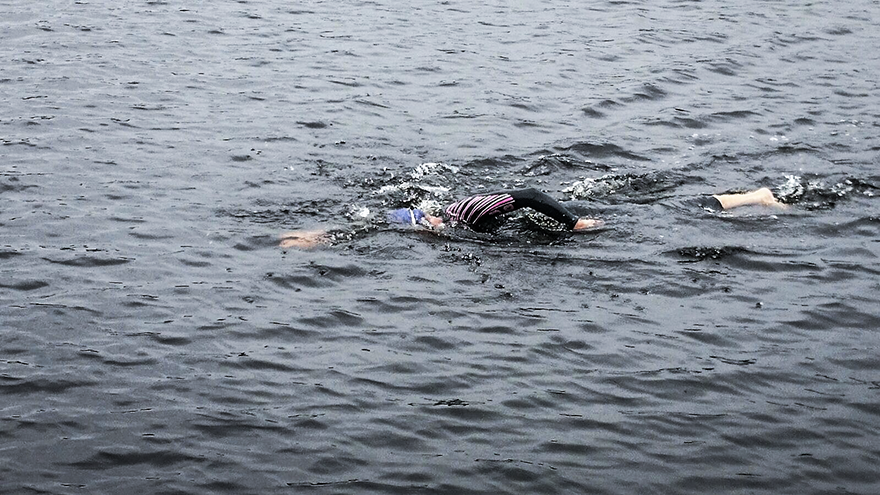 Orca_triathlon_openwater